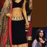 Bollywood-Lehenga-Choli-Designs
