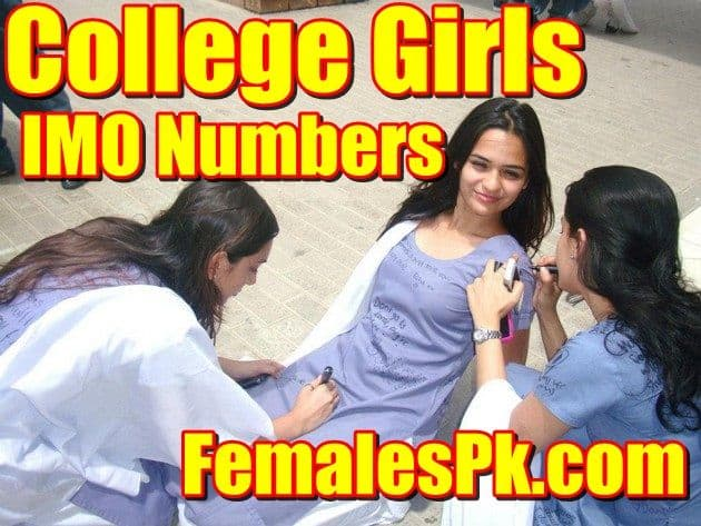 Pakistani IMO Girls Mobile Numbers